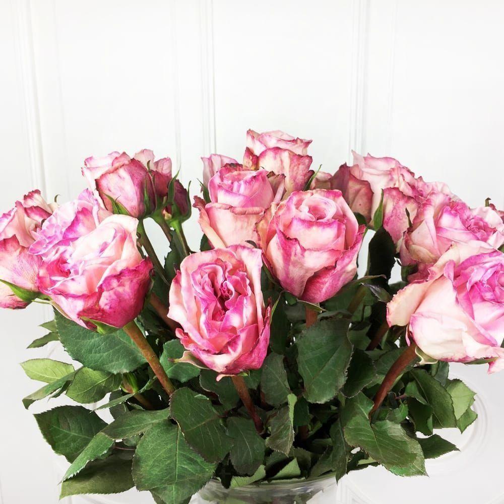 Букет 21 пионовидная ароматная роза Pink Ohara