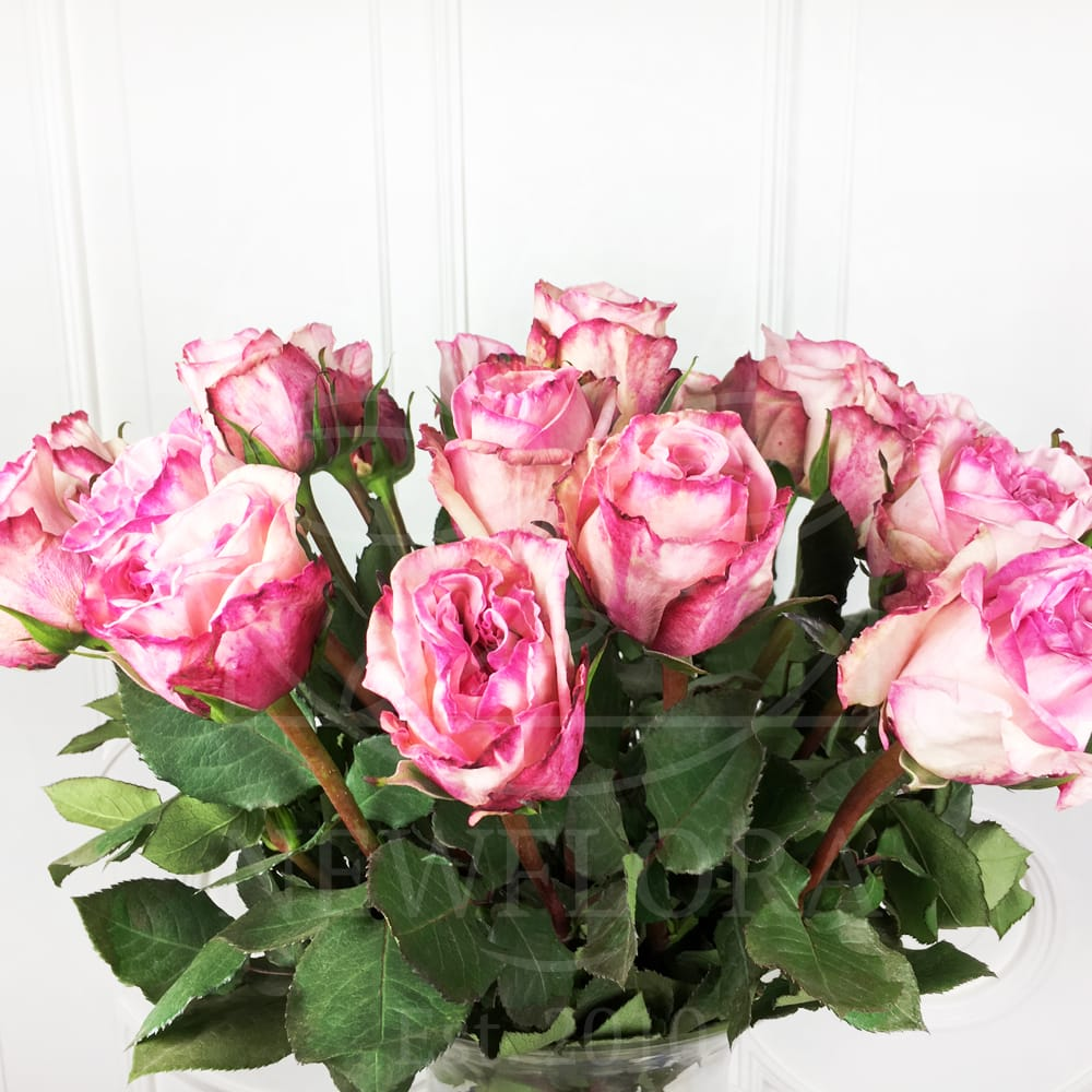 Букет 21 ароматная роза Pink Ohara