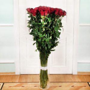 Букет 75 красных роз высотой 160см