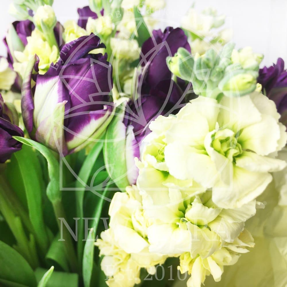 Букет 19 фиолетовых тюльпанов с матиолой