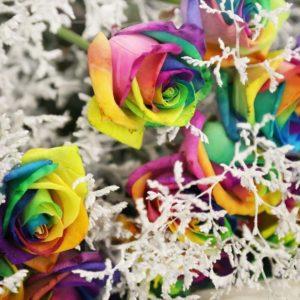 Букет 19 радужных роз со снежной зеленью