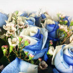 Букет 19 бело голубых роз с зеленью