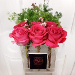 9 роз с зеленью в акриловой коробке