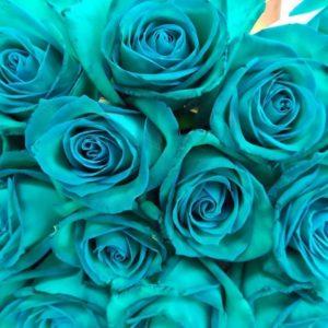 Букет 19 изумрудных роз (Юж. Америка)