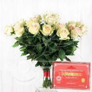 Букет 25 бело-розовых роз Marzipan (Premium)