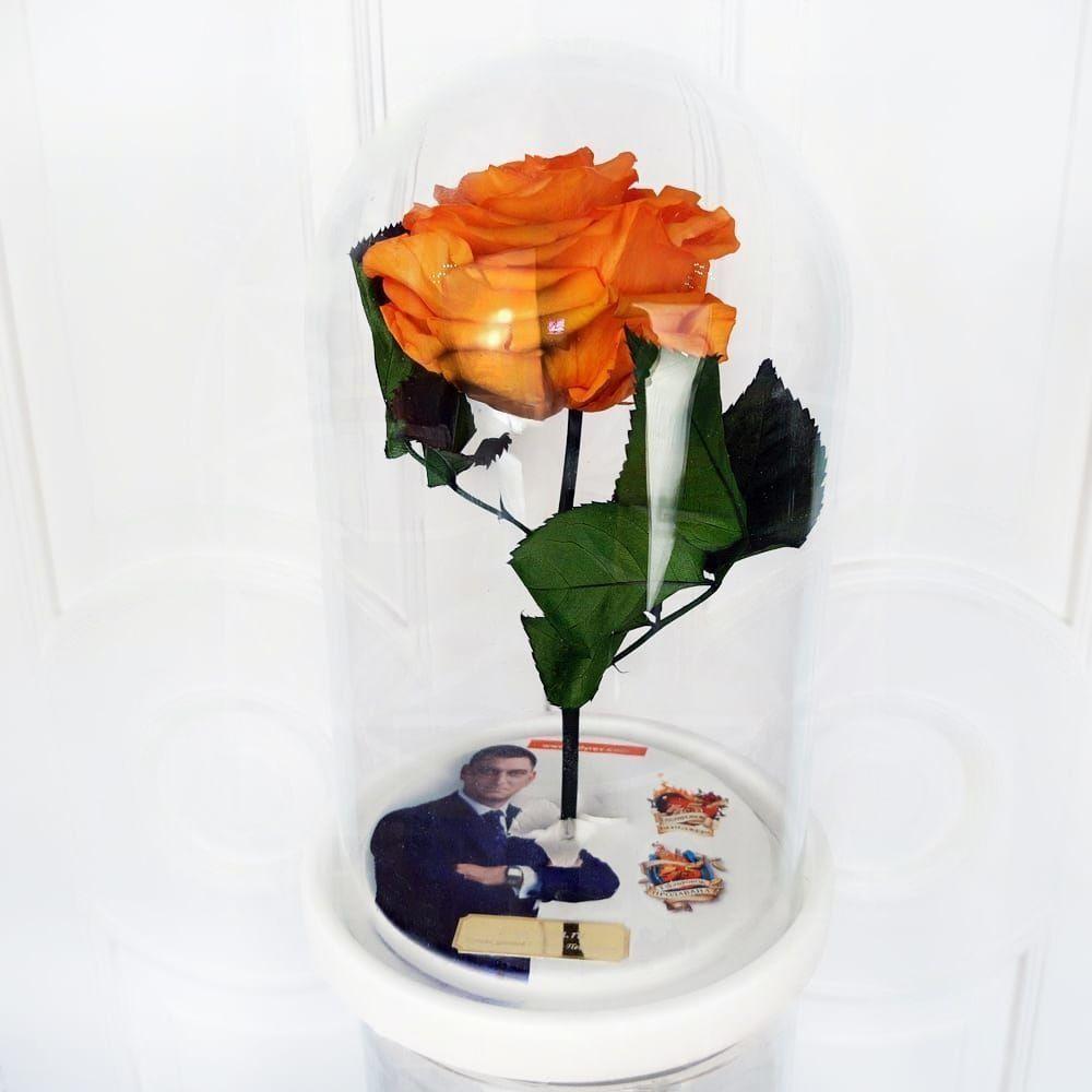 Роза в колбе с фотографией (цвет на выбор)