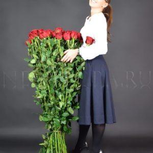 Букет 55 красных роз высотой 130см