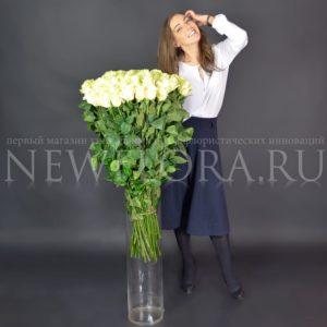 Букет 75 белых роз высотой 100см