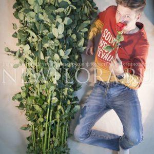Букет 75 красных роз высотой 210см