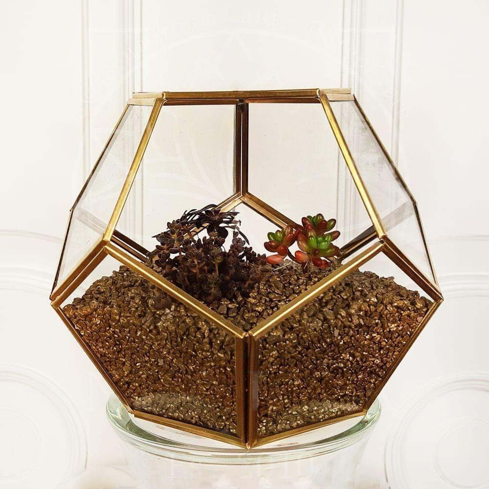 Золотой флорариум с тремя суккулентами