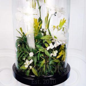 Живые цветы в колбе (на выбор)