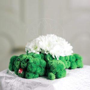 Игрушка из цветов черепаха