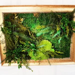 Картина из стабилизированного мха и зелени 30×40см