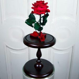 Роза в колбе на высокой подставке (цвет на выбор)