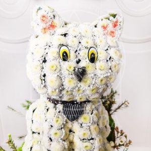 Игрушка из цветов кот