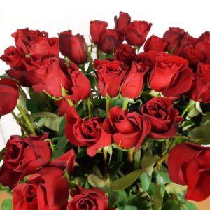 Букет 45 красных роз высотой 120см