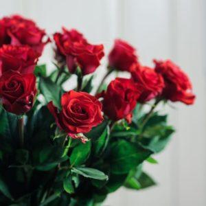 25 красных роз 60см сорт Нина (Nina)