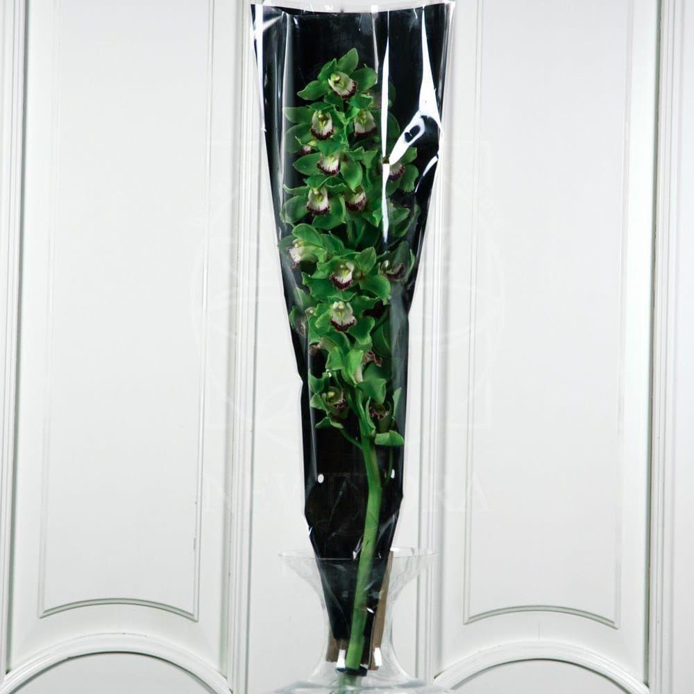 Орхидея цимбидиум зеленая (80см)