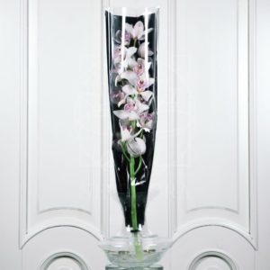 Орхидея цимбидиум белая (80см)
