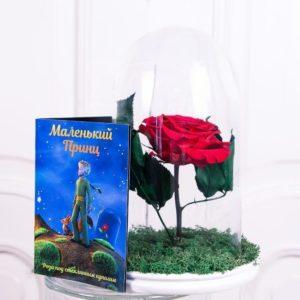 Роза в колбе из сказки Маленький Принц + буклет