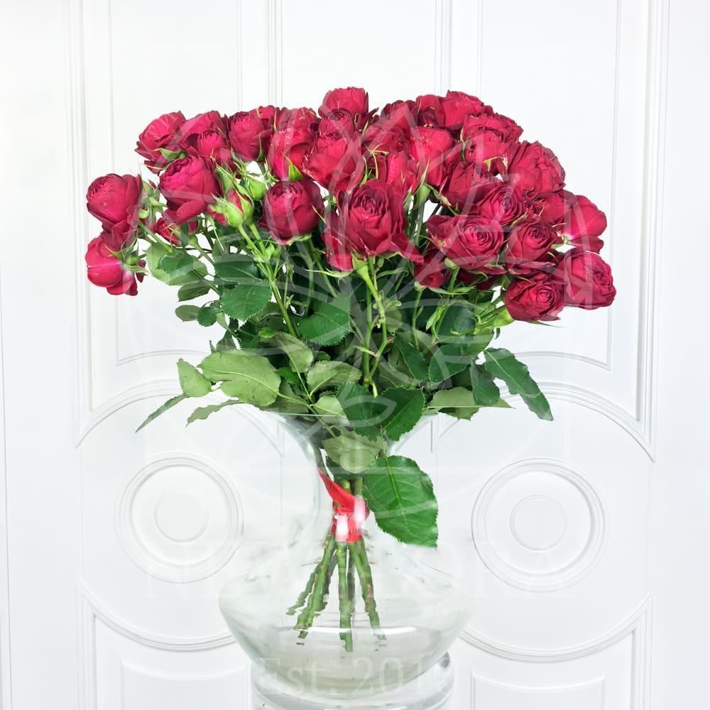 Букет 9 пионовидных роз Red Lace