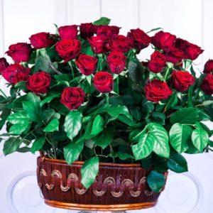 Корзина цветов 51 красная роза