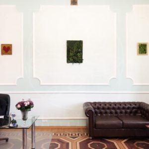 Картина из стабилизированных мхов и зелени 70×50см