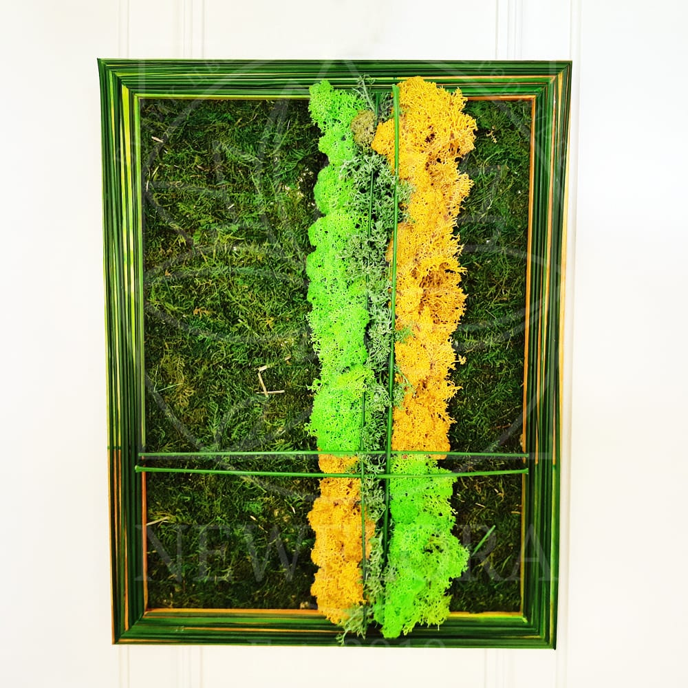 Картина из стабилизированной зелени и мха 30×40см