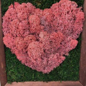 Картина розовое сердце из стабилизированного мха 26×30см