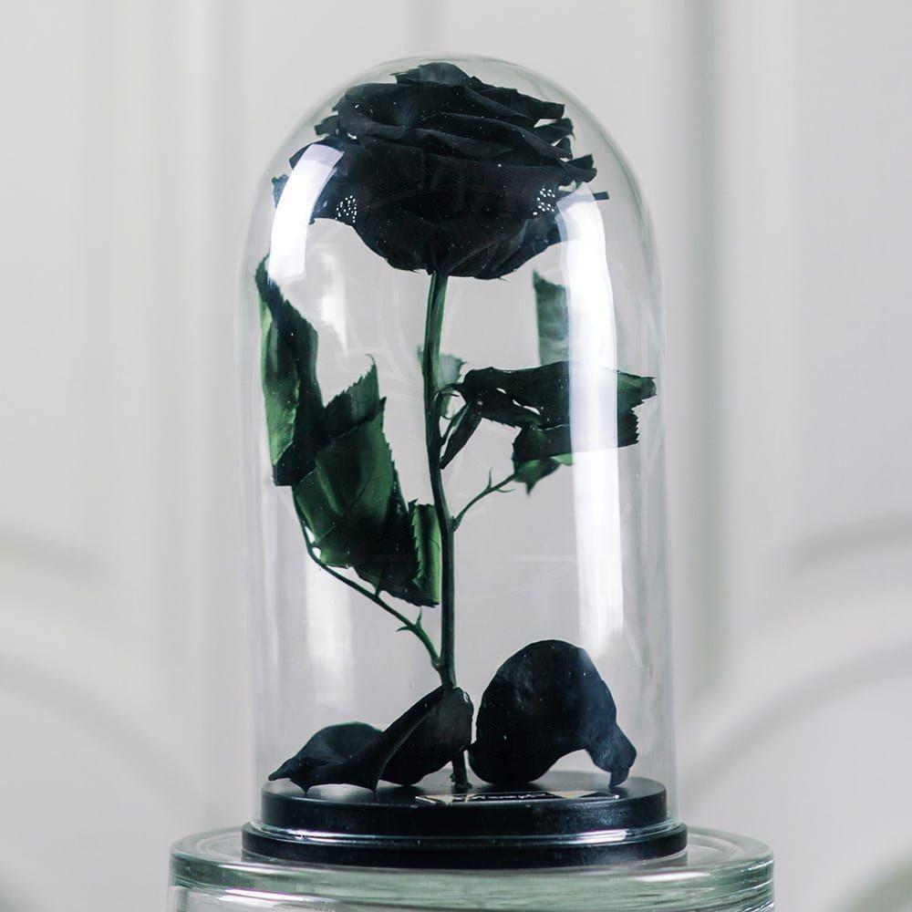 Черная роза в колбе с ароматом (Premium)