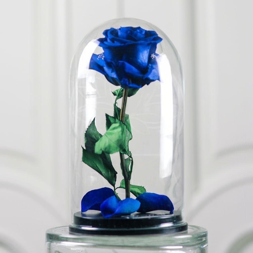 Синяя роза в колбе с ароматом (Premium)