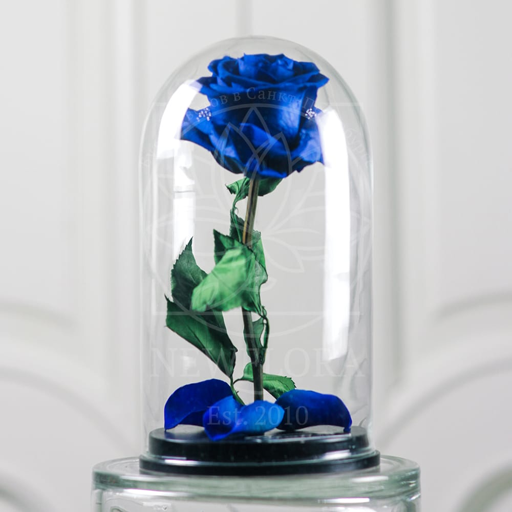 Синяя роза в колбе DisneyRose