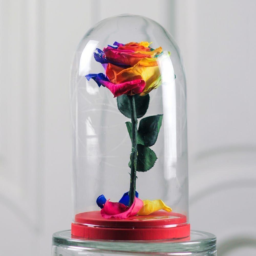 Радужная роза в колбе DisneyRose