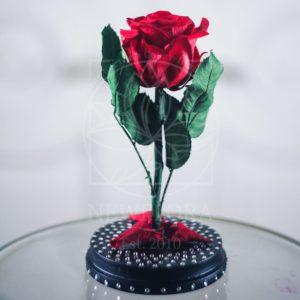 Мини роза в колбе со стразами Swarovski