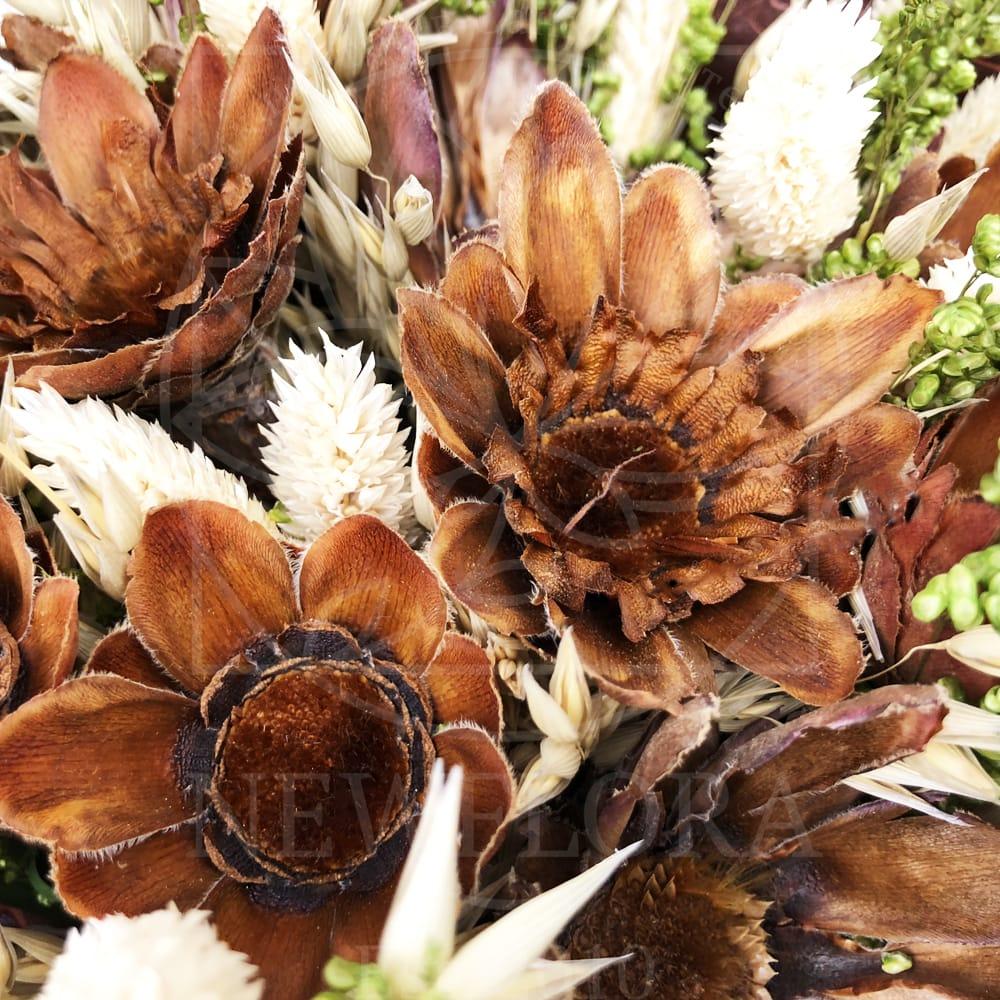 Букет сухоцветов со злаками и сухой протеей
