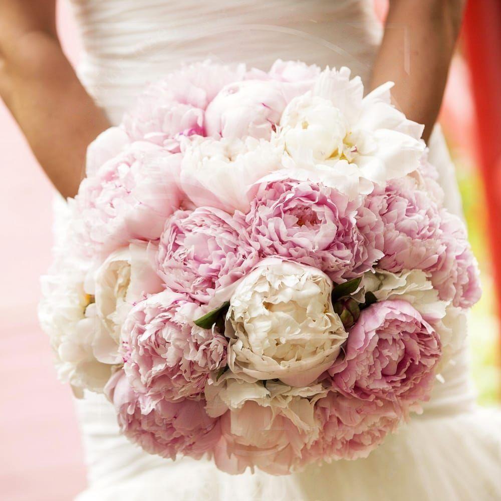 Свадебный букет из 35 пионов белых и розовых