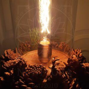 Ретро светильник лампа Эдисона в колбе с шишками и ветками сосны, питание от сети