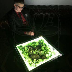 Журнальный столик со стабилизированным мхом и подсветкой 55×55см