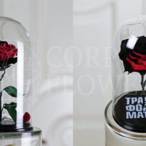 Корпоративные розы в колбе