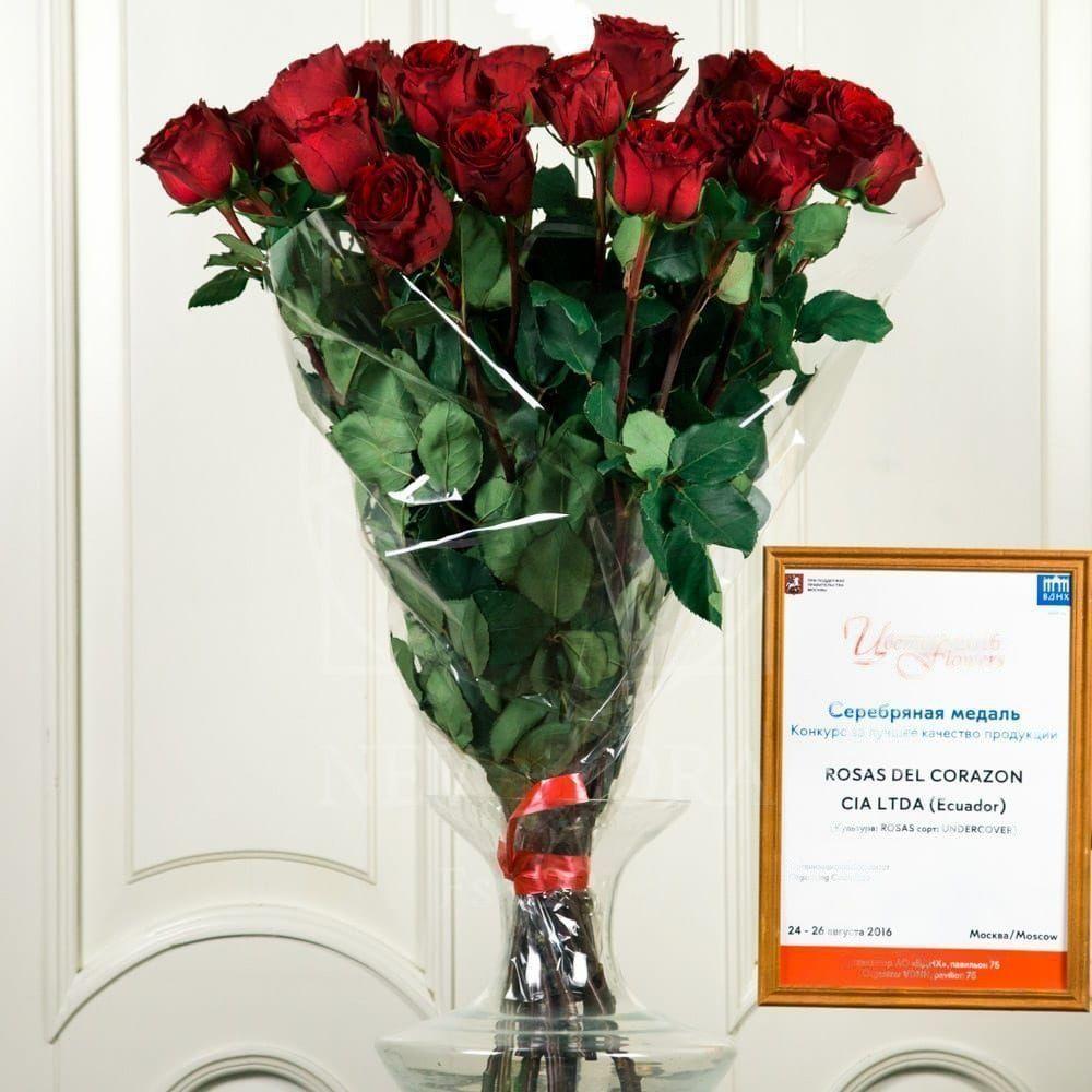 Букет 25 красных роз 70см сорт Undercover (Premium)