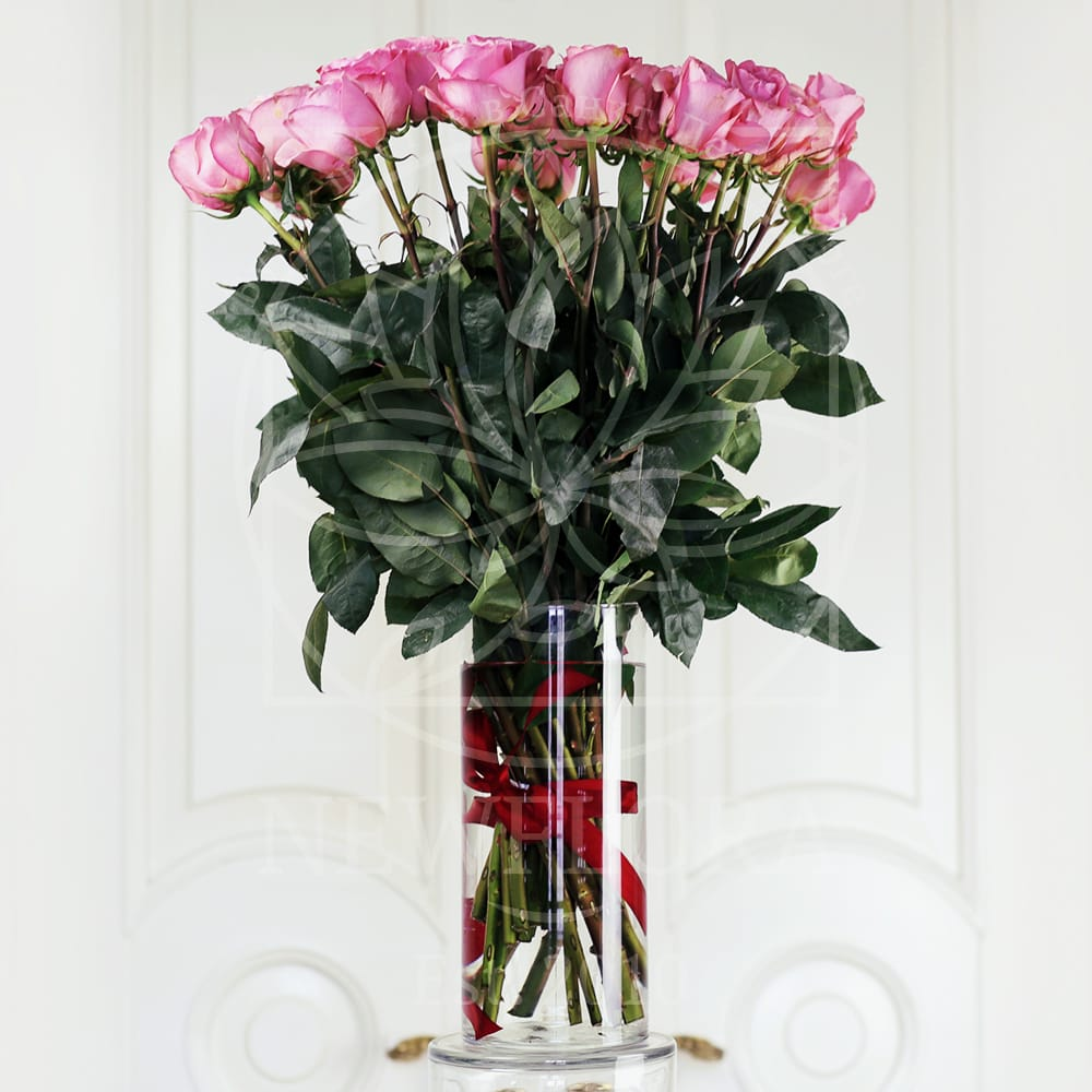 25 розовых роз 70см сорт Saga (Premium) в вазе
