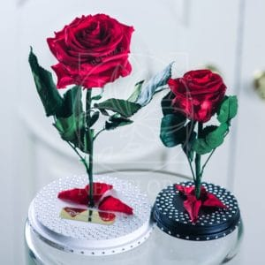 Мини роза в колбе со стразами Swarovski (цвет на выбор)