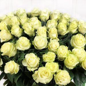 Букет 101 белая роза высотой 110см