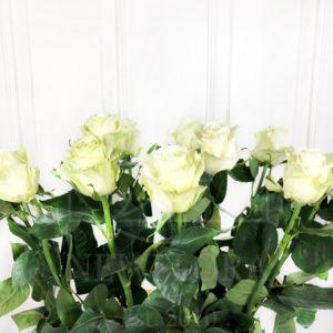 Букет 11 белых роз высотой 110см