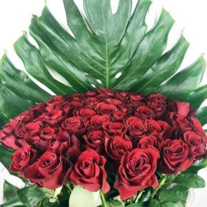 Букет 51 красная роза высотой 100см с гигантской монстерой