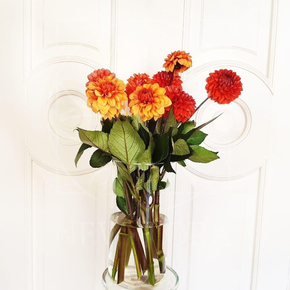 Букет ростове, заказ цветов георгины санкт-петербург