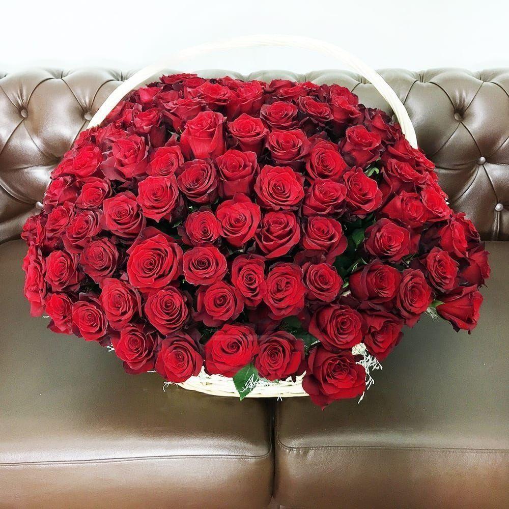 Корзина цветов 151 красная роза с зеленью (Юж. Америка)