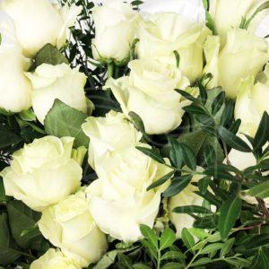 Букет 19 белых роз с фисташкой