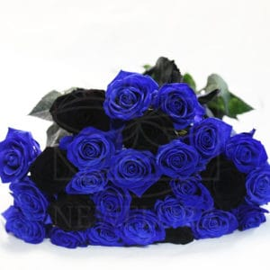 Букет 25 синих и черных роз