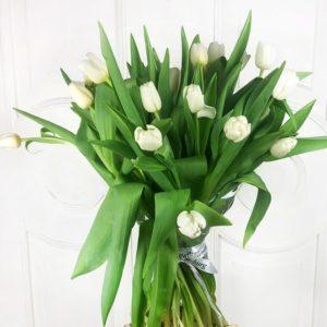 Букет 25 высоких белых тюльпанов с луковицей (от 60см)